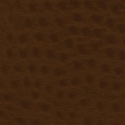 Ostrich CD 168 Rust